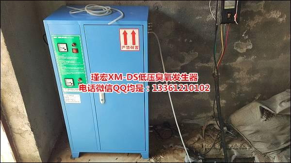 电解臭氧发生器