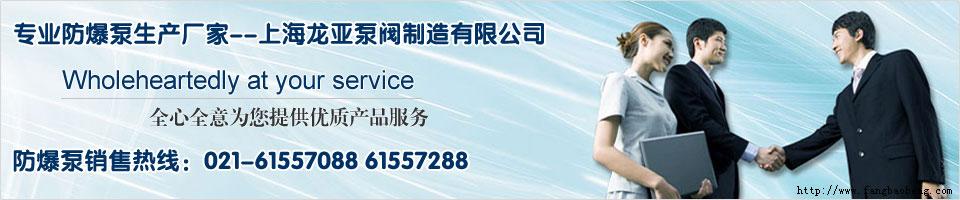 欢迎您访问上海龙亚防爆水泵网站