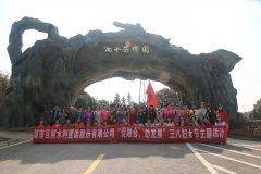 """公司开展""""三·八""""国际劳动妇女节踏春活动"""