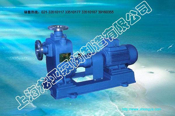 ZX系列自吸式稀碱液泵
