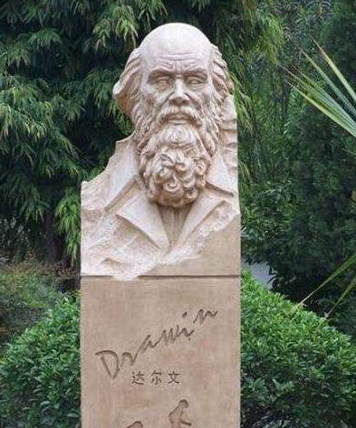 达尔文铜雕塑