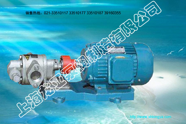 KCB齿轮式不锈钢泵