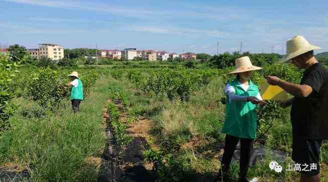 上高县农业农村局:齐头并进 呵护秀美农业农村生态环境