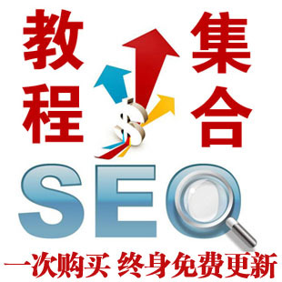 <strong>seo优化教程网站搜索引擎快速排</strong>