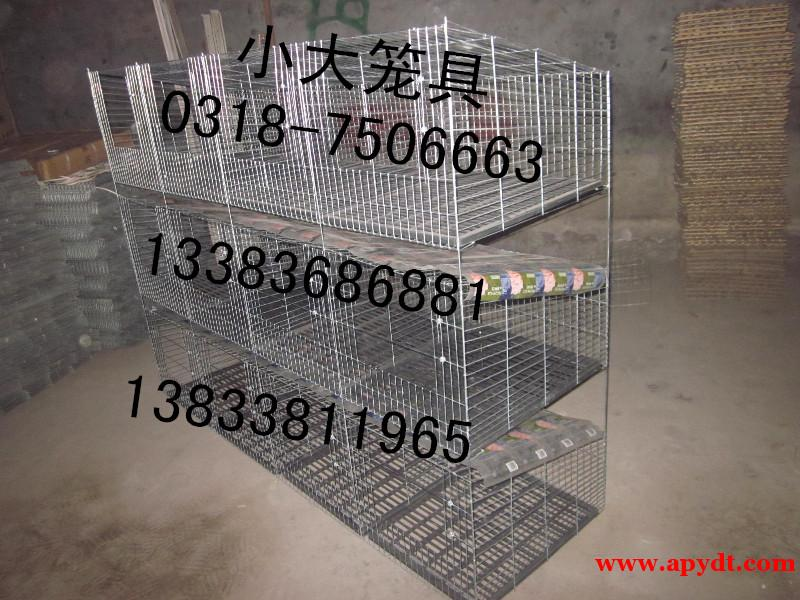 卖蛋鸡笼 雏鸡笼 兔子笼 鸽子笼 鹌鹑笼 鹧鸪笼 鸟笼 狗笼