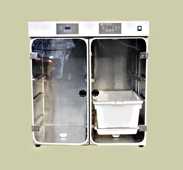 氧环境动物试验箱