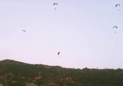 济南滑翔伞友空中百花绽放