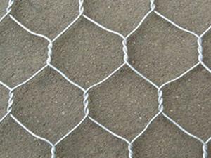 电镀锌拧花六角网