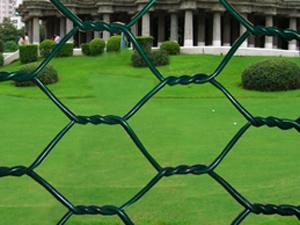 浸塑(PVC)拧花六角网