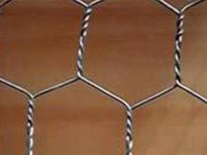 热镀锌拧花六角网