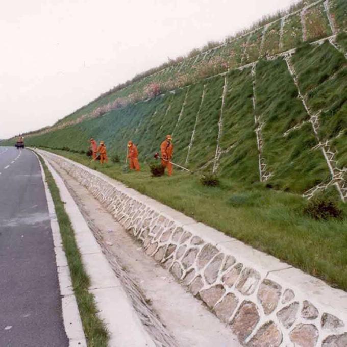 公路边坡绿化