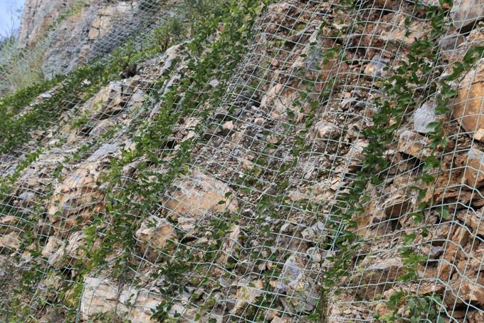 山体边坡绿化施工