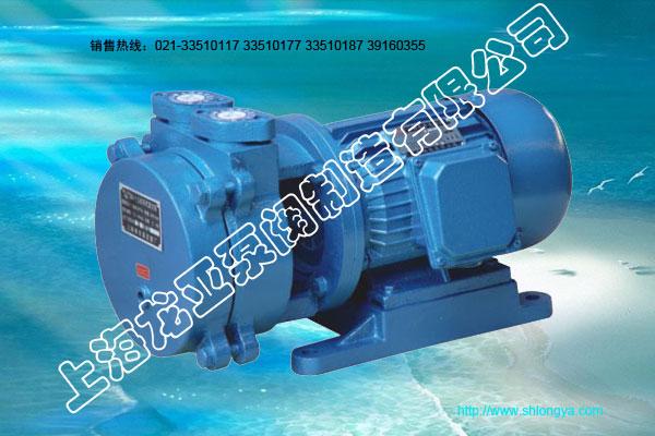 SK-0.15型直联水环式真空泵