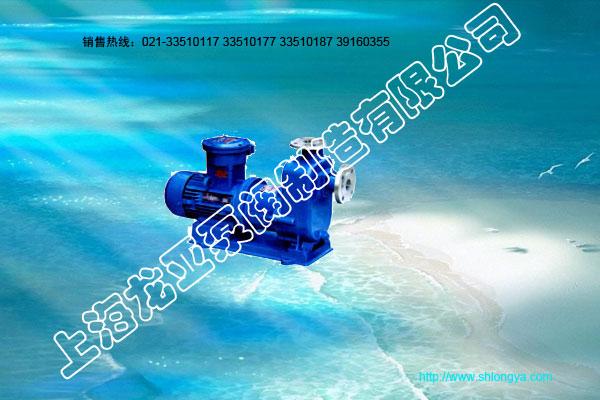 ZCQ 系列自吸式磁力驱动泵