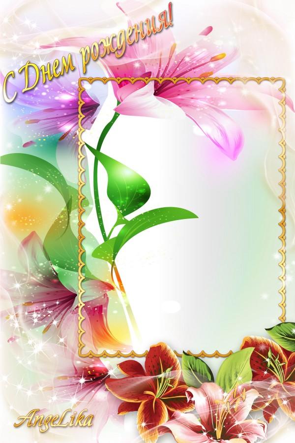 素材 psd 花纹边框 炫彩花纹 鲜花 金色边框 梦幻背景 绿叶