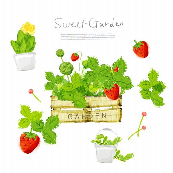 素材 psd 花纹边框 手绘植物 草莓 绿叶 绿色植物