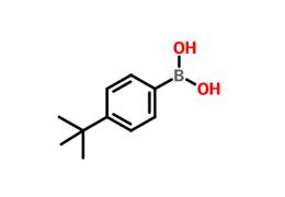 4-叔丁基苯硼酸