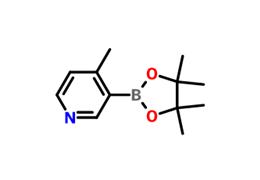 4-甲基吡啶-3-硼酸频哪醇酯