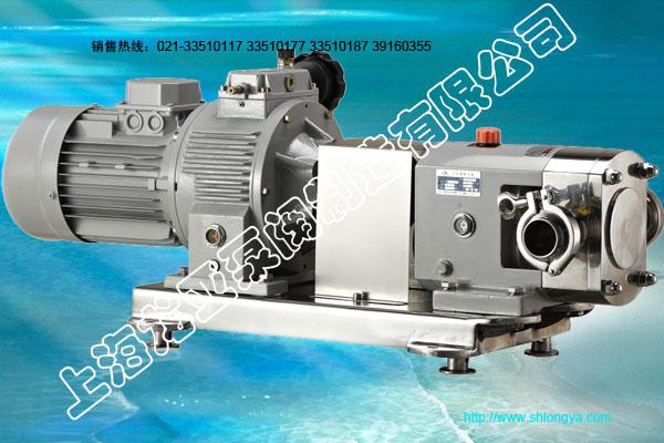 RP调速转子泵工作原理