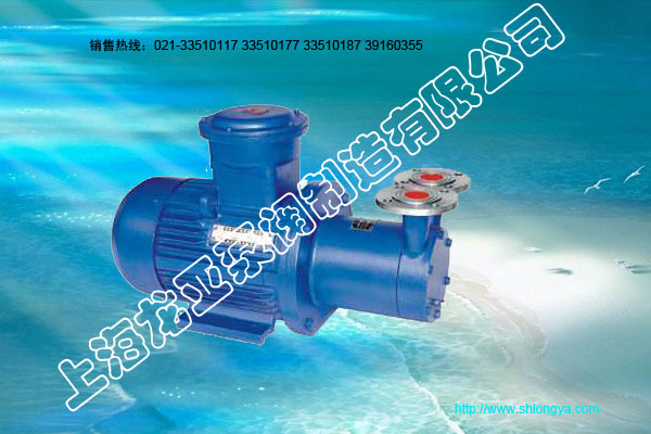 CW系列磁力漩涡泵