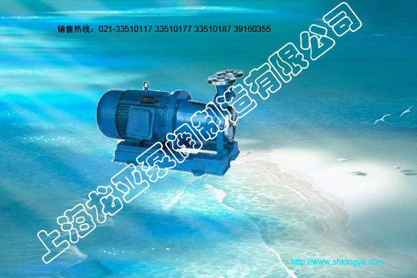 CWB20-40系列磁力传动旋涡泵