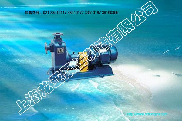 ZX型卧式自吸泵