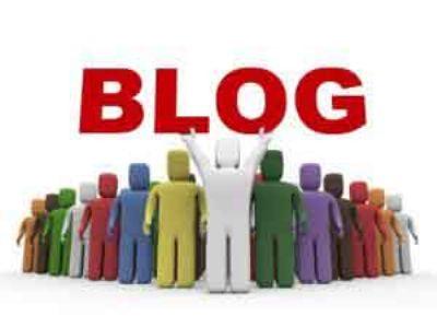 网易、新浪、凤凰、天涯、中金等五大博客体验及查询收录方法