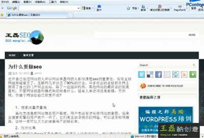 SEO新手入门视频教程:王磊SEO优化视频教程全八集附下载地址!
