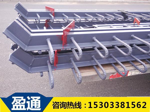 E型钢伸缩缝厂家