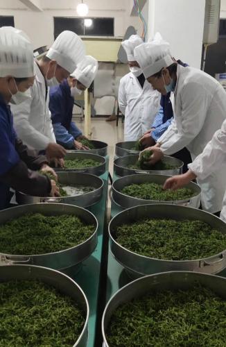 一瓣心香、一弯清泉、一股暖流 ――慧明红实业董事长刘园英谈红茶