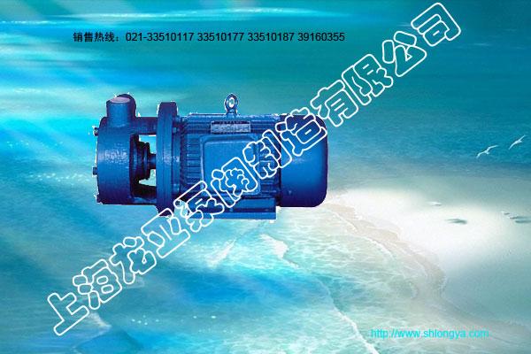 W系列旋涡泵,单级旋涡泵