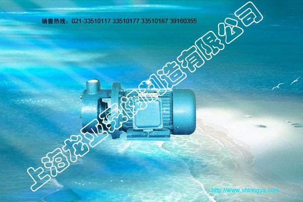 W漩涡泵,1W单级漩涡泵,BD双级漩涡泵