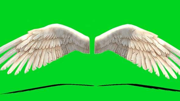 僵尸钢铁侠翅膀绿幕抠像素材