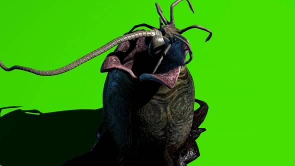 绿幕抠像-外星生物破壳出现绿屏3D