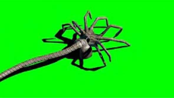绿幕抠像-外星寄生虫行走绿屏3D