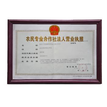 赵县千顷地粮食种植专业合作社营业执照正本