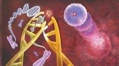 质子治疗原发性肝癌效果如何?缩略图