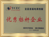 Yichang City, the First Outstanding Benchmarking Enterprise of Electricity Suppliers Innovation