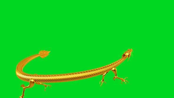 金龙绿幕抠像素材