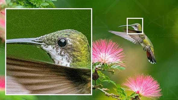 图像锐化清晰增强修复软件 Topaz Sharpen AI 2.0.5 WIN版