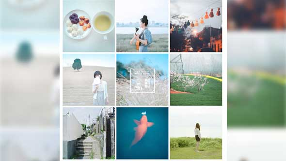 LR预设-134组唯美日系田园小清新美食预设+上千张摄影作品集