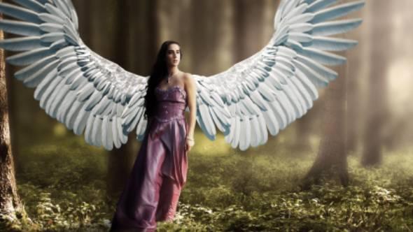 视频素材-24组影视级天使黑暗灰烬粒子彩虹翅膀循环拍打动画素材